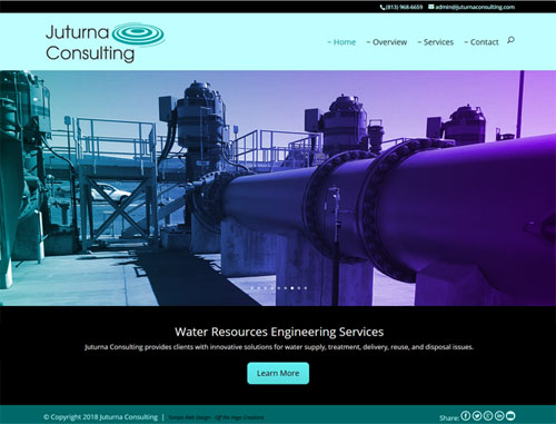 Juturna Consulting Website