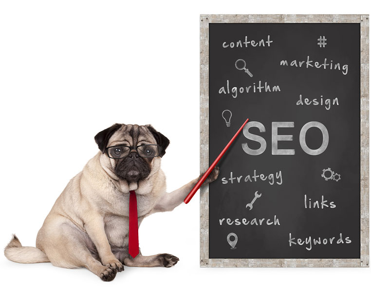 Pug teaching SEO